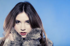 Fashionable girl with long hair. Young woman in fur coat on blue. Royalty Free Stock Photos