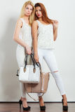 Fashionable girls with bags handbags. Stock Images