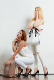 Fashionable girls with bags handbags. Royalty Free Stock Photo