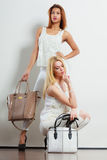Fashionable girls with bags handbags. Stock Photography