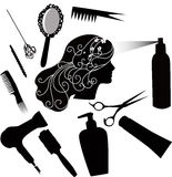 Fashionable hairdress Stock Image