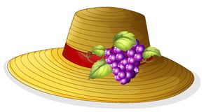 A fashionable hat with a fruit Royalty Free Stock Photos