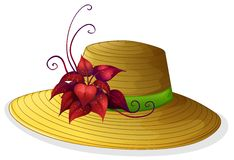 A fashionable hat with a plant Royalty Free Stock Photography