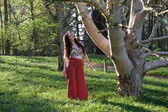 Fashionable lady looking at a silver birch tree stock photos
