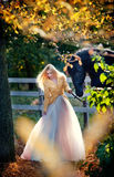Fashionable lady with white bridal dress near black horse in forest.  Stock Photography