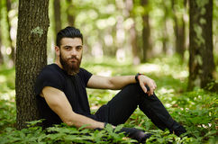 Fashionable man in the oak forest Stock Images