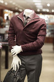 Fashionable mannequin. Fashionable male mannequin with arms folded Royalty Free Stock Photo