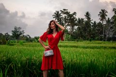 Fashionable model holding leather snakeskin python bag, Elegant outfit. Model in jungle. Concept in the magazine, place royalty free stock photo