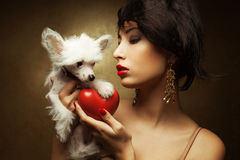 Fashionable model holding red heart and white little chinese crested dog Stock Photos