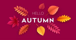 Fashionable modern autumn background with bright autumn leaves for design of posters. Fashionable modern autumn background with bright autumn leaves for design Stock Photography