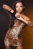 Fashionable mulatto woman Royalty Free Stock Photography
