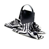 Fashionable scarf and a hand bag Stock Images
