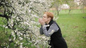 Fashionable senior woman looks at and smells cherry tree blossom. Slow motion. Fashionable senior woman looks at and smells cherry tree blossom and smiles in stock footage