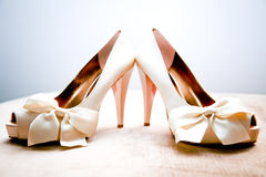 Fashionable Sexy Shoes. A pair of feminine and sexy high heeled shoes Stock Photography