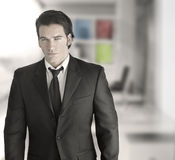 Sexy successful business man Stock Photography