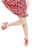 Fashionable skirt Stock Images