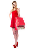 Fashionable teen girl holding shopping bags Stock Images