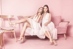 Fashionable twins sisters posing on pink background. Royalty Free Stock Photography