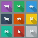 Fashionable varicolored flat icons with long shadows types of meat products. Nine animals on a bright background.