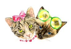 Fashionable watercolor cats isolated on white background Stock Photography