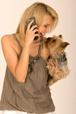 Fashionable woman with cell phone and dog Stock Photo