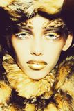 Fashionable woman in fur coat royalty free stock image