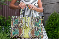Fashionable woman holding luxury snakeskin python bag. Elegant outfit. Close up of purse in hands of stylish lady. Model Stock Photo