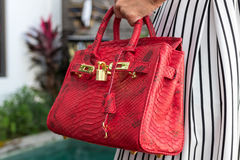 Fashionable woman holding luxury snakeskin python bag. Elegant outfit. Close up of purse in hands of stylish lady. Model Royalty Free Stock Photos