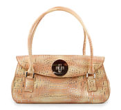 Fashionable woman leather bag Stock Images