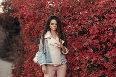 Fashionable Woman look autumn outdoor portrait. Young beautiful royalty free stock images