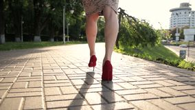 Fashionable woman wearing high heel shoes stock video