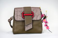 Fashionable women bag. With flower Stock Image
