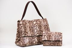 Fashionable women bag royalty free stock images
