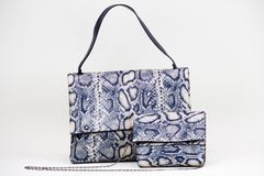 Fashionable women bag. With snake texture Royalty Free Stock Images