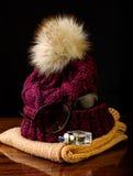 Fashionable women's clothing Royalty Free Stock Photos