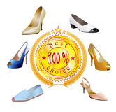 Fashionable women's shoes are on white background. Royalty Free Stock Image