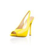 Fashionable women shoe Royalty Free Stock Photos