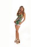 Fashionable young Latina woman royalty free stock image