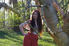 Fashionably dressed lady posing with a silver birch tree stock photography