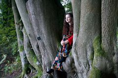 Fashionable lady sitting in a beech tree royalty free stock photo
