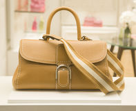 A FASHIONAL BAG Royalty Free Stock Images