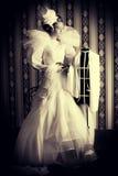 Fashioner novel Royalty Free Stock Photos
