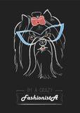 Fashionista för Yorkshire terrier vektor illustrationer