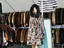 Fashionnable Hooded Fur Coat On Mannequin Stock Images