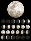 Fasi della luna o lunari Fotografia Stock Libera da Diritti