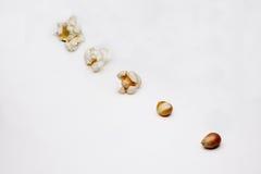 Fasi della preparazione di popcorn Fotografia Stock Libera da Diritti