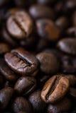 fasola strzał kawowy makro- fotografia royalty free
