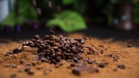 Fasola zwykła wpadająca do kakaowego proszku kawy na czarnym stole zbiory wideo