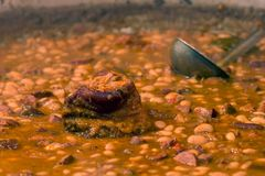 Fasole cu ciolan - pork and beans Stock Photography