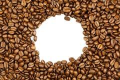 Fasole odizolowywać na białym tła pojęciu dla projekta kawa Obraz Stock